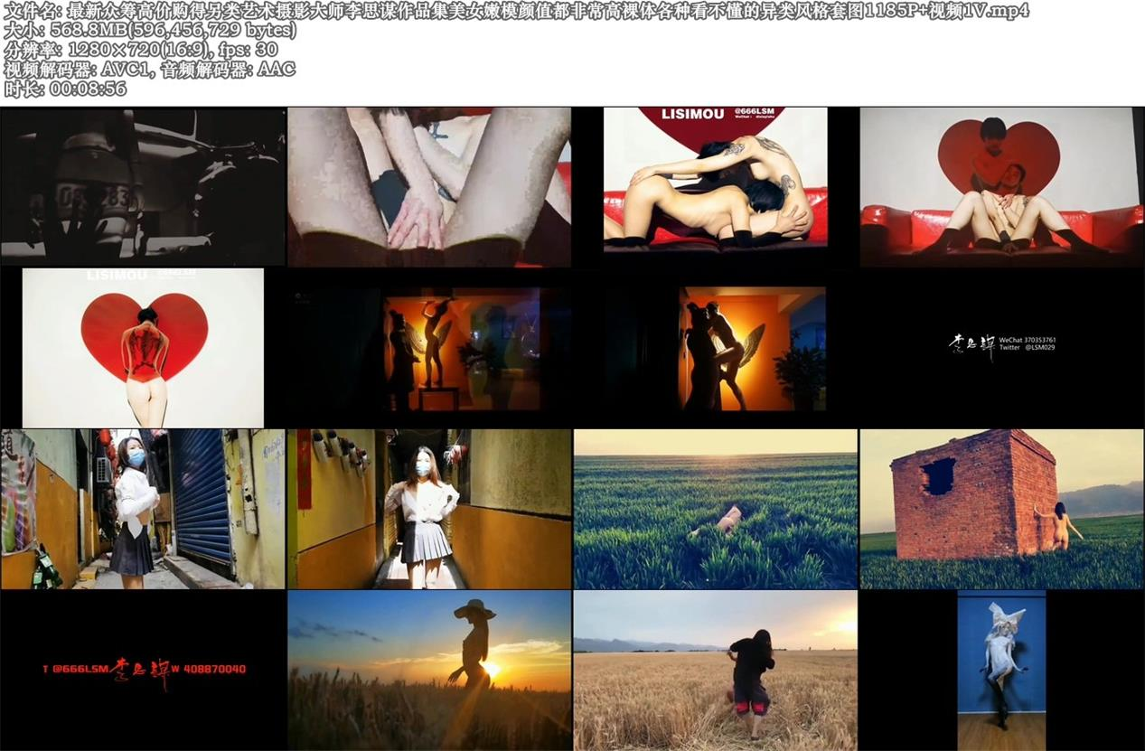 超高价购得另类艺术摄影大师李思谋作品集美女嫩模颜值都非常高裸体各种异类风格套图+视频 制服诱惑-第11张